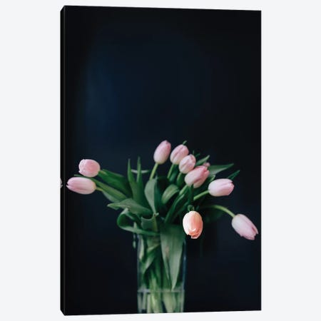 Pink Tulips Canvas Print #CVA185} by Chelsea Victoria Canvas Artwork