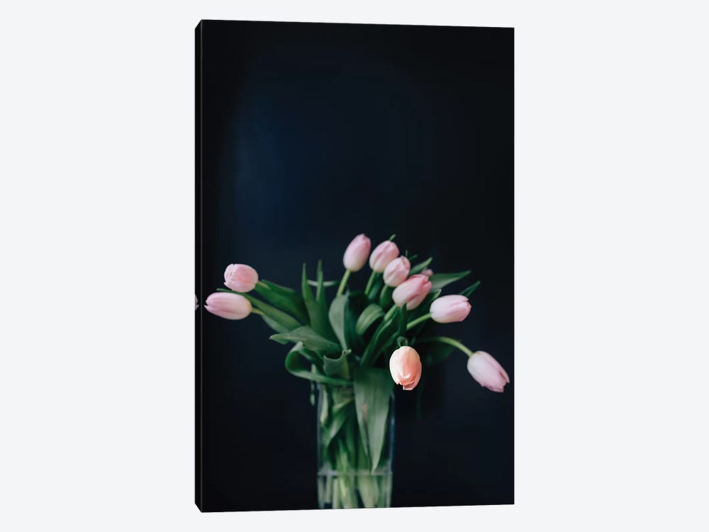 Pink Tulips 1-piece Canvas Artwork