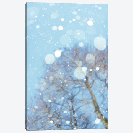 Snow Blast Canvas Print #CVA194} by Chelsea Victoria Canvas Art Print
