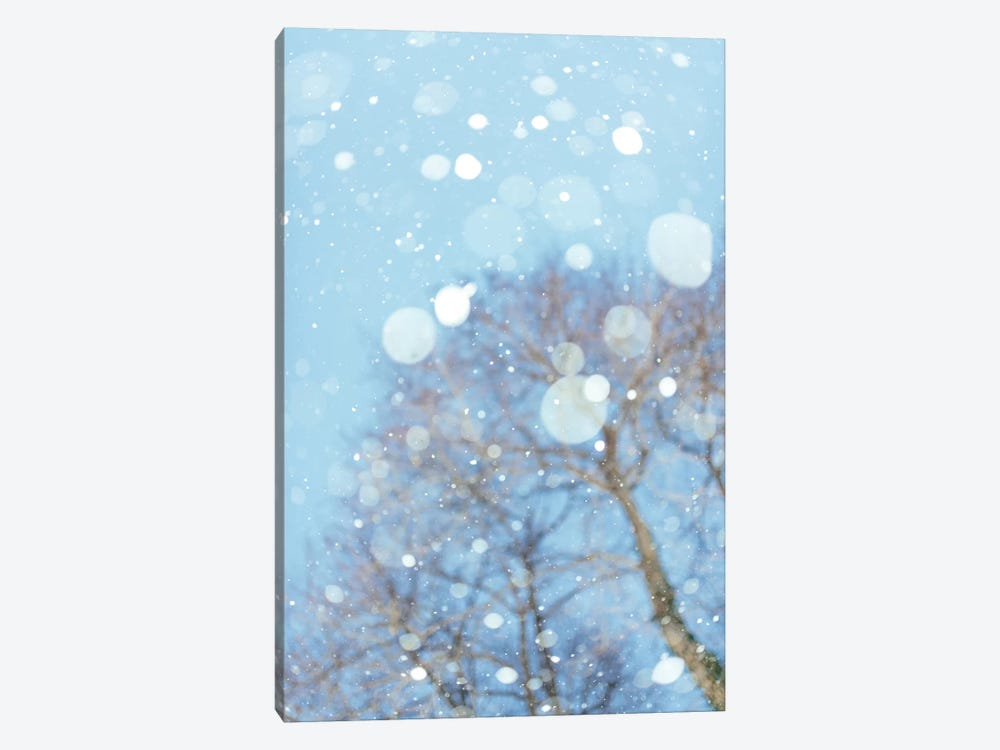 Snow Blast by Chelsea Victoria 1-piece Canvas Art