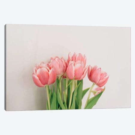 Spring Tulips Canvas Print #CVA196} by Chelsea Victoria Canvas Print
