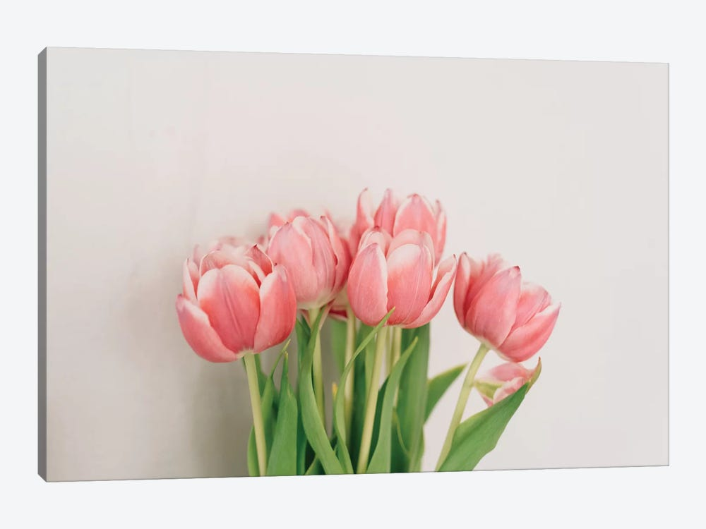 Spring Tulips by Chelsea Victoria 1-piece Canvas Art