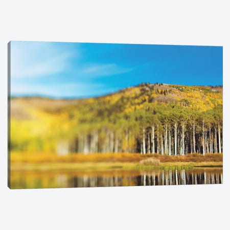 Willow Lake Canvas Print #CVA208} by Chelsea Victoria Canvas Wall Art