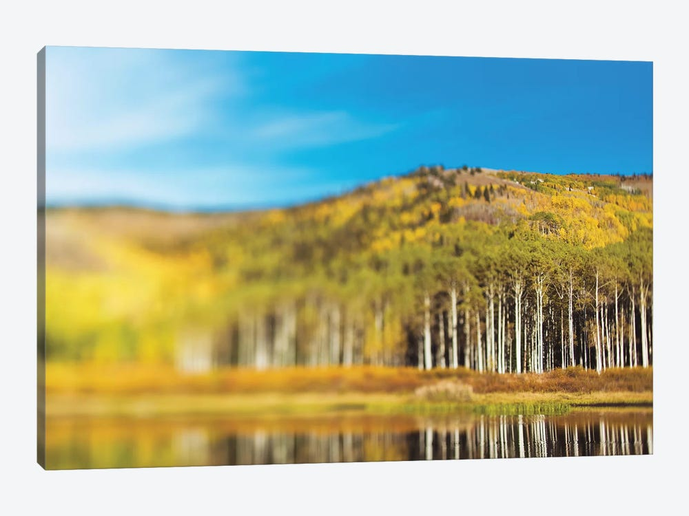 Willow Lake by Chelsea Victoria 1-piece Canvas Print