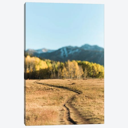 Willow Lake Path Canvas Print #CVA209} by Chelsea Victoria Canvas Wall Art