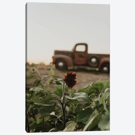 The Truck And The Sunflower Canvas Print #CVA218} by Chelsea Victoria Canvas Art Print