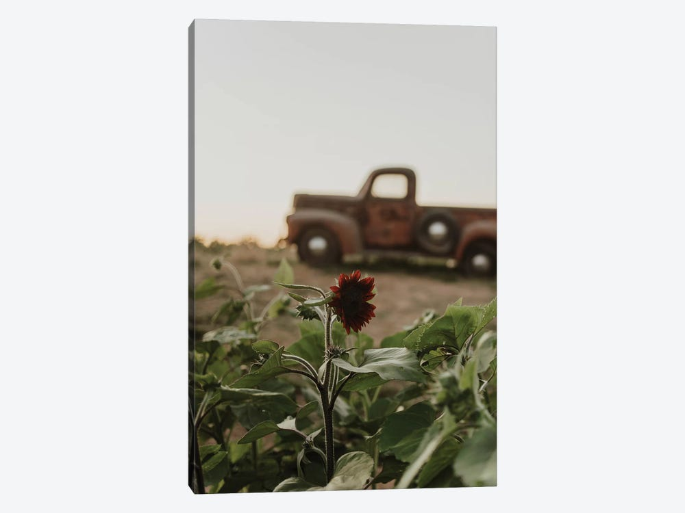 The Truck And The Sunflower by Chelsea Victoria 1-piece Canvas Artwork