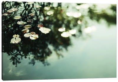 Lillies Canvas Print #CVA23