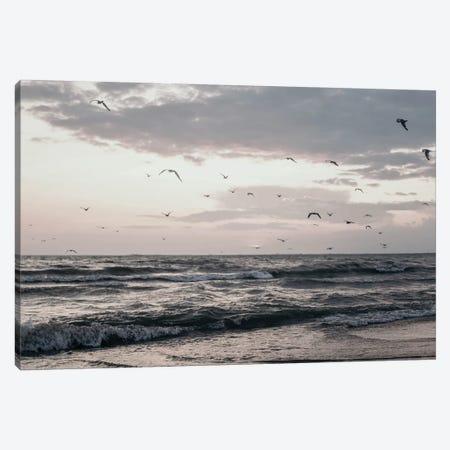 Lake Erie Canvas Print #CVA240} by Chelsea Victoria Canvas Art