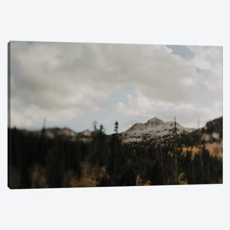 The Mountains Canvas Print #CVA292} by Chelsea Victoria Art Print