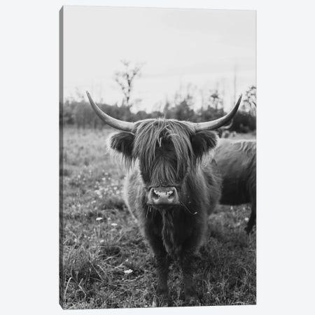 The Curious Cow Black and White Canvas Print #CVA302} by Chelsea Victoria Canvas Art Print