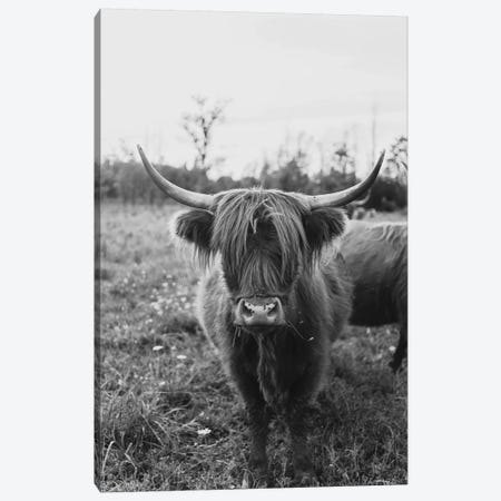 The Curious Cow Black and White Canvas Print #CVA302} by Chelsea Victoria Canvas Art Print