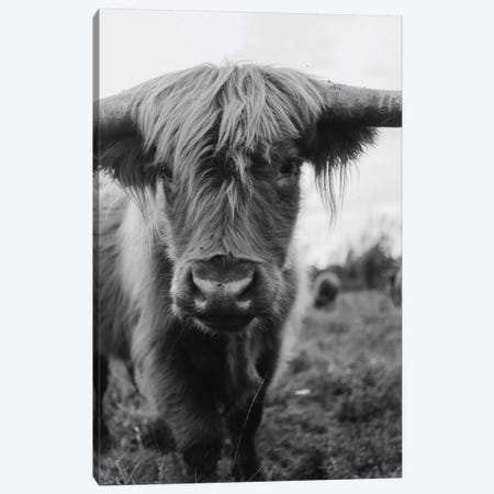 Highland Ghost Canvas Print #CVA303} by Chelsea Victoria Art Print