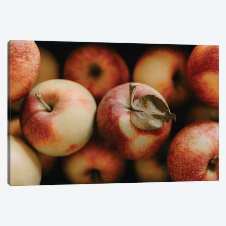 Apple Still Life Canvas Print #CVA338} by Chelsea Victoria Canvas Artwork