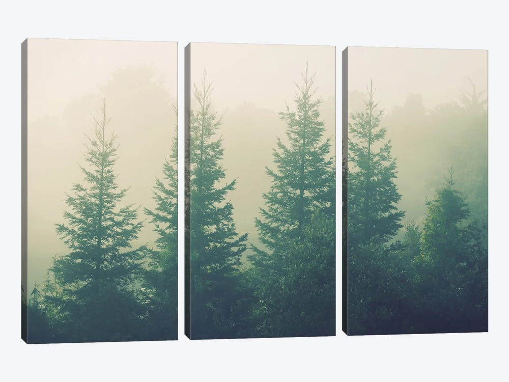 Going The Distance by Chelsea Victoria 3-piece Canvas Wall Art