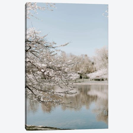 Cherry Blossoms By The Lake Canvas Print #CVA353} by Chelsea Victoria Canvas Wall Art