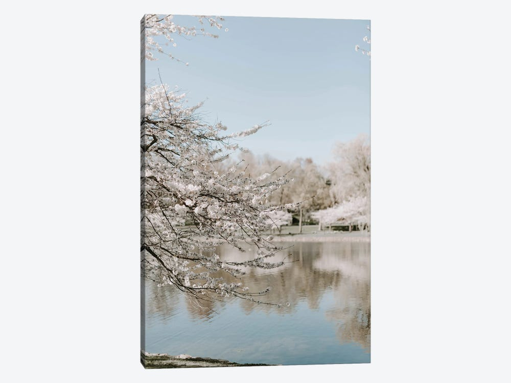 Cherry Blossoms By The Lake by Chelsea Victoria 1-piece Canvas Wall Art