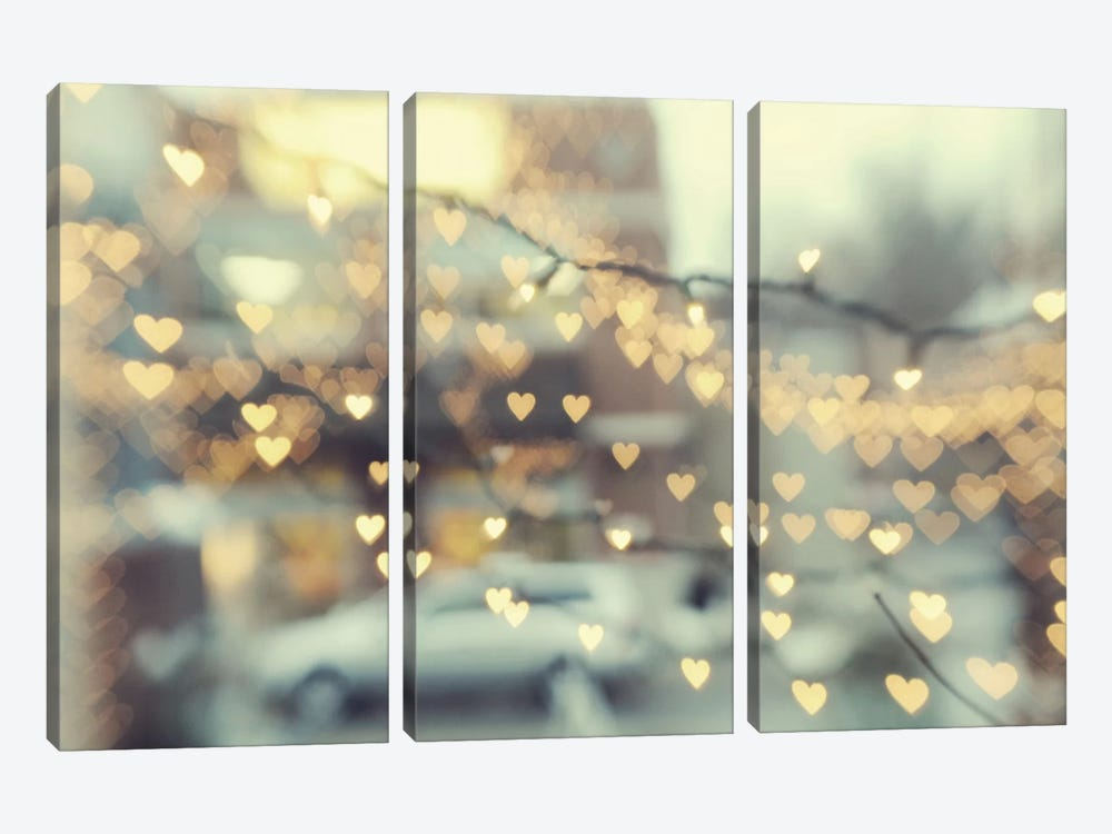 Holding Onto Love by Chelsea Victoria 3-piece Canvas Wall Art
