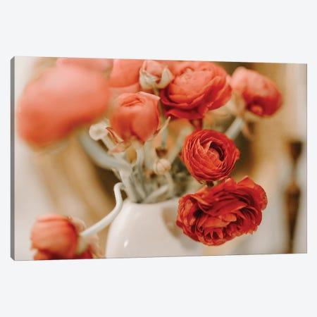 Ranunculus Blossom Canvas Print #CVA373} by Chelsea Victoria Canvas Wall Art