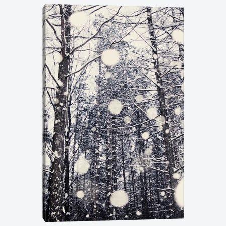Into The Woods Canvas Print #CVA39} by Chelsea Victoria Canvas Artwork