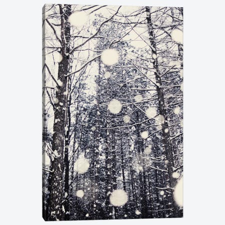 Into The Woods Canvas Print #CVA39} by Chelsea Victoria Canvas Artwork