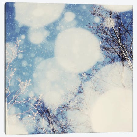 Snow III Canvas Print #CVA69} by Chelsea Victoria Canvas Print