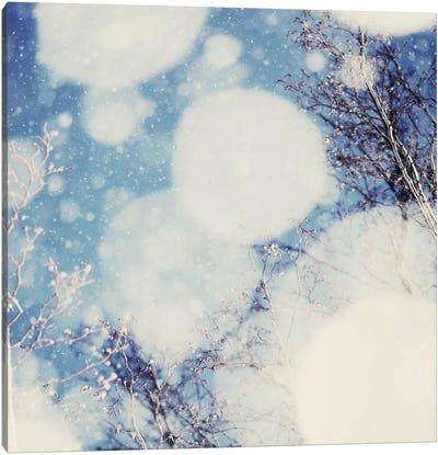 Snow III Canvas Art Print