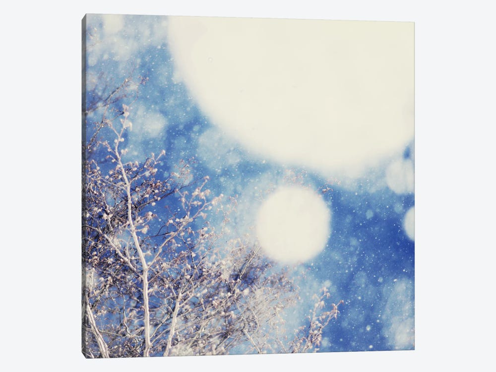 Snow And Trees II by Chelsea Victoria 1-piece Canvas Artwork