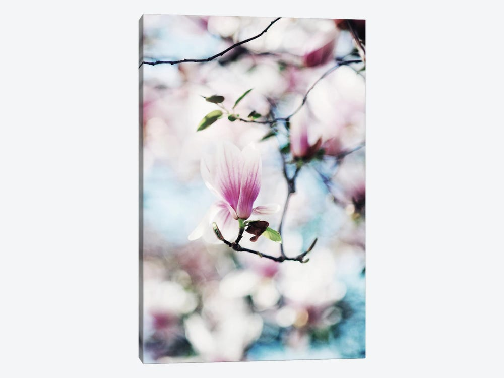 Spring In Bloom by Chelsea Victoria 1-piece Art Print
