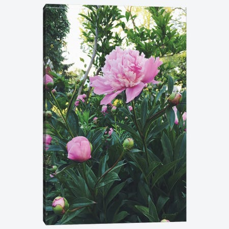 The Garden Canvas Print #CVA91} by Chelsea Victoria Canvas Wall Art