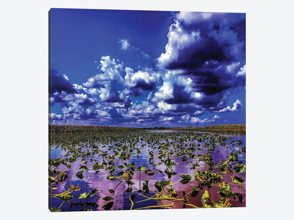 Everglades 1-piece Canvas Art