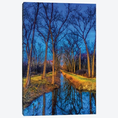 Water In The Woods Canvas Print #CVE50} by Caitlin Vera Canvas Wall Art