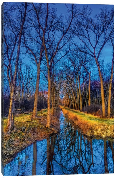 Water In The Woods Canvas Art Print