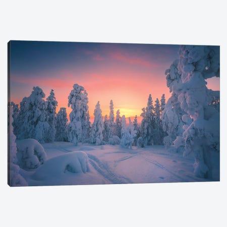 Levi Lapland - Finland Canvas Print #CVK22} by Cuma Çevik Art Print