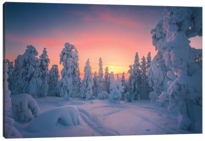 Levi Lapland - Finland Canvas Art Print