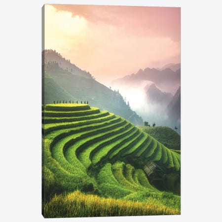 Rice Fields I - North Vietnam Canvas Print #CVK31} by Cuma Çevik Canvas Art