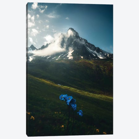Rize I - Karadeniz - Turkey Canvas Print #CVK32} by Cuma Çevik Canvas Wall Art