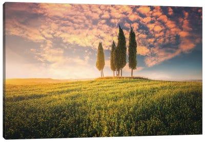 Tuscany I - Italy Canvas Art Print
