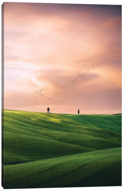 Tuscany III - Italy Canvas Art Print