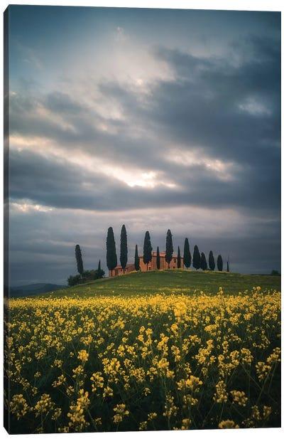 Tuscany IV - Italy Canvas Art Print