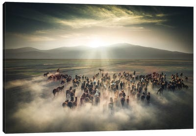 Wild Horses II - Cappadocia - Turkey Canvas Art Print