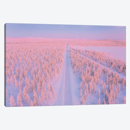 Lapland II Canvas Print #CVK62} by Cuma Çevik Canvas Print