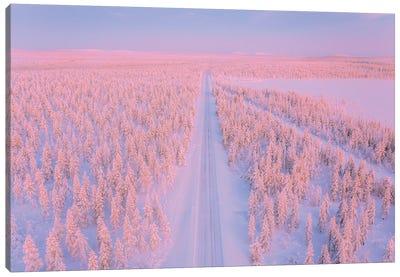 Lapland II Canvas Art Print