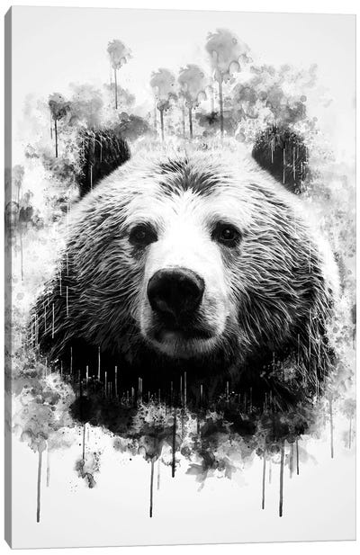 Bear Head In Black And White Canvas Art Print