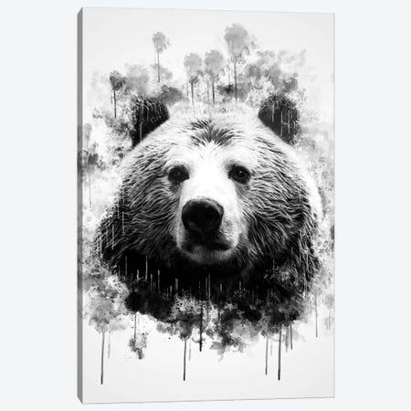 Bear Head In Black And White Canvas Print #CVL119} by Cornel Vlad Canvas Print