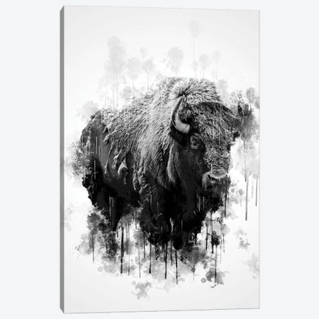 Bison In Black And White 3-Piece Canvas #CVL120} by Cornel Vlad Canvas Wall Art