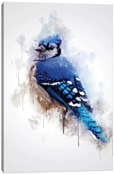 Blue Jay Bird Canvas Art Print
