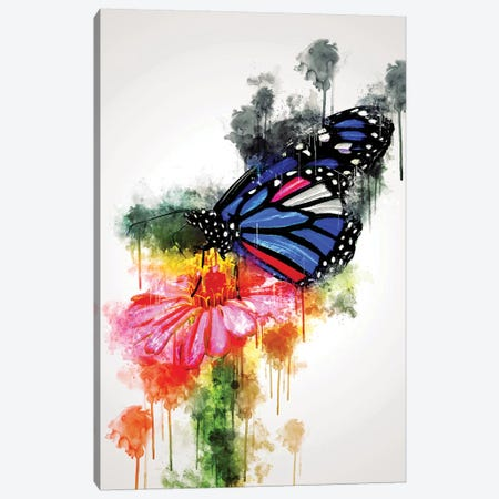 Butterfly On Flower Canvas Print #CVL122} by Cornel Vlad Canvas Artwork