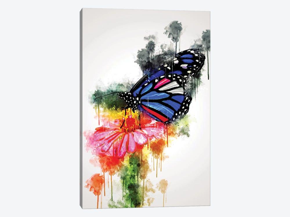 Butterfly On Flower by Cornel Vlad 1-piece Canvas Artwork