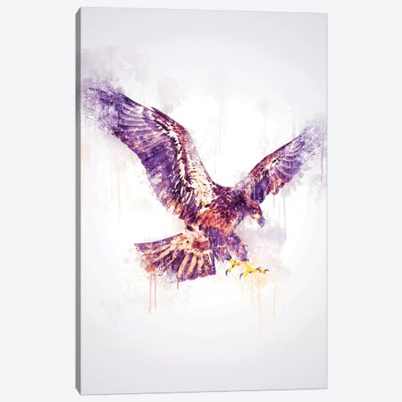 Eagle Canvas Print #CVL125} by Cornel Vlad Art Print
